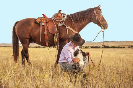 kaski jeździeckie